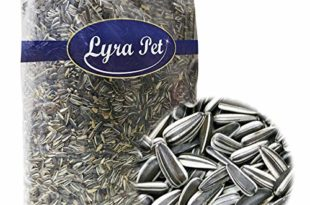 Lyra Pet® 25 kg Sonnenblumenkerne 25000 g gestreift Vogelfutter Winterfutter Ernte 2019