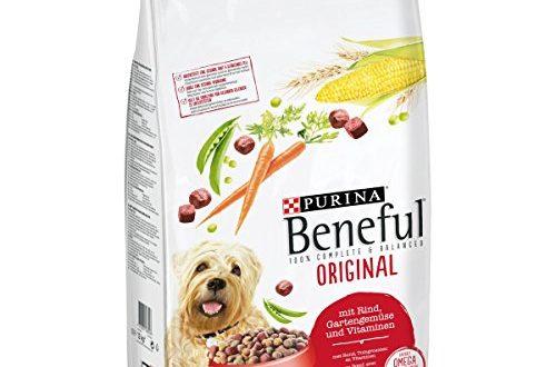 PURINA BENEFUL Original Hunde-Trockenfutter: mit Rind, Gemüse & Vitaminen, ausgewogene Hundenahrung, hochwertige Proteinquelle, 1er Pack (1x12kg Sack)